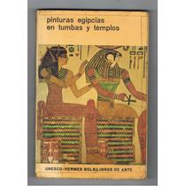 Pinturas Egipcias En Tumbas Y Templos / Libro De Bolsillo