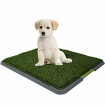 Doggy Tapete Entrenador Patch Para Perros Cachorros Potty
