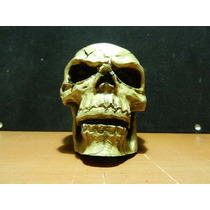 Cráneo Chico