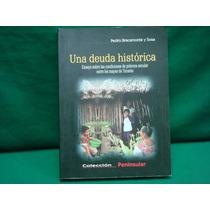P. Bracamonte Y Sosa, Una Deuda Histórica. Ensayo Sobre Las