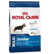 Royal Canin Maxi Puppy 15.9 Kg,mejor Precio A Domicilio Df