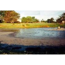 Biodigestor(bacteria-enzima)planta Tratamiento Agua Residual