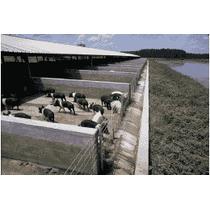 Degradador Estiercol(bacteria-enzimas)establo Rancho Lagunas