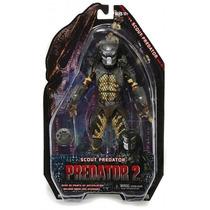 Depredadores/predators Serie 6 Scout Predator