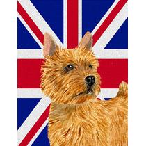 Norwich Terrier Con Inglés Union Jack Británica Bandera De