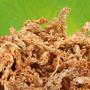 Sphagnum Moss, Sustrato Orquideas, Carnivoras, Bonsais Fdp