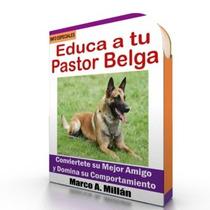 Guía De Entrenamiento Para Perro Pastor Belga