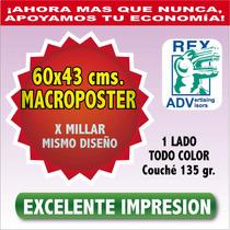 Mil Carteles 43x60 Cms. 4c Todo Color Imprenta Publicidad