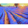 Lavender Field- Cuadros, Pinturas Al Oleo De Dmitry Spiros