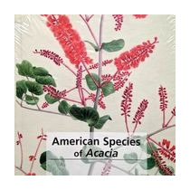 American Species Of Acacia
