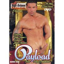 Playload Gay Lgbtt