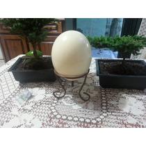 Huevos De Avestruz 250