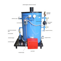 Caldera Vertical De 20hp A Gas O Diesel