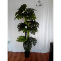 Plantas Artificiales Y Arboles Y Flores Y Palmas Maa