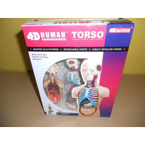 Rompecabezas 4d Modelo Anatómico Torso Humano