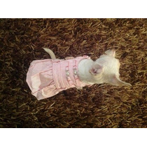 Vestido Falda Blusa Para Mascotas Fashion Moda Canina,perro