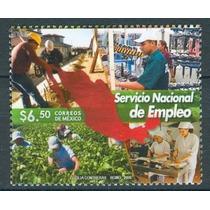 Sc 2597 Año 2008 Servicio Nacional De Empleo