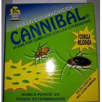 Cucarachas Cannibal Insecticida