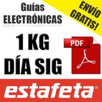 Guia Electronica Estafeta Dia Siguiente Digital Envío Gratis