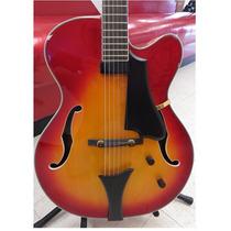 Guitarra Eléctrica Archtop Höfner Hct-j17 Dhl Gratis 12 Msi