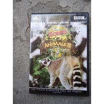 Dvd Animales El Lemur El Castor Bbc
