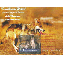 2012 Tarjeta Máxima Fauna Peligro Extinción Lobo México