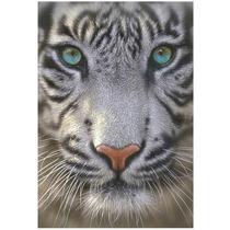 15971 Tigre Blanco Cara Rompecabezas 500 Piezas De Educa