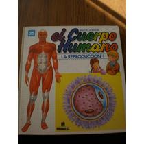 El Cuerpo Humano La Reproducción-1 #25, Multilibro S.a.