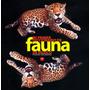 Mi Primer Diccionario De Fauna De Mexico - Pedro Moreno Hent