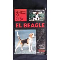 Perros De Raza, El Beagle, Ernesto Y Giovanna Capra