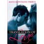 Translation Of Love, Alice Montalvo-tribue