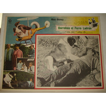 Dwayne Hickman, Barrabas El Perro Ladron, Cartel De Cine