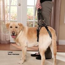 Arnes De Soporte Rehabilitacion Y Cuidado Perro Grande