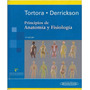 Tortora Principios De Anatomia Libro Alta Calidad Original