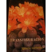 Transformación Ignacio Larrañaga