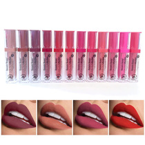 Gama 12 Lip Gloss Labial Indeleble Matte Tipo Kylie Jenner