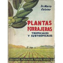 Plantas Forrajeras Tropicales Y Subtropicales. Mario Calvino