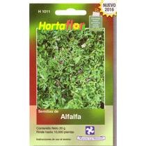 1 Sobre De Semilla De Alfalfa Con Tratamiento Para Siembra