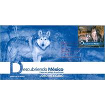 Sc 2786 Sobre Fauna En Peligro De Extincion Lobo Mexicano