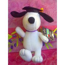 Snoopy De Peluche Vestido De Graduado