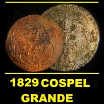 Moneda 1/4 Real 1829 Cospel Grande Cuartilla Federal
