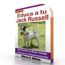 Guía De Entrenamiento Para Perro Jack Russell