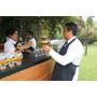 Meseros, Bartenders, Gios Edecanes, Operativo Agencias
