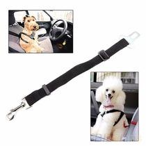Cinturón Arnés Auto Carro Para Perro Mascota