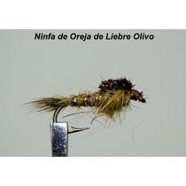 Mosca Ninfa De Oreja De Liebre