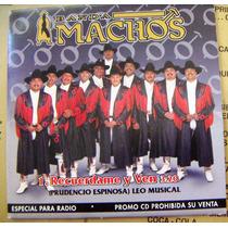 Cd Sencillo, Banda Machos, Caballo Dorado, Daa