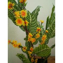 Flores ,arboles Y Plantas Para Interiores Daa