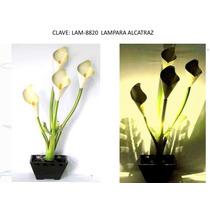 Macetas Luminosasf Rreflectoras Diseñosde Plantas Daa