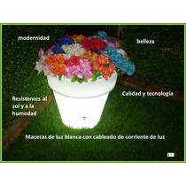 Macetas, Macetones, Jardineras Cubos De Luz Led Maa