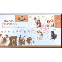 Sc 2567 Año 2007 Sobre Perros